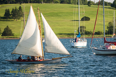 Sailing in Lunenburg harbour.