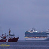 CCGS Hudson and Ruby Princess.