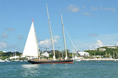 """Spirit of Bermuda"""