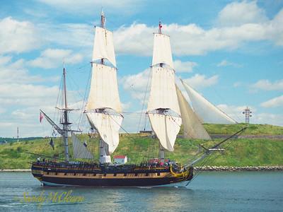 'HMS Rose'
