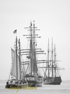 From left to right, the schooner Sherman Zwicker, the brig Prince William, and the barque 'HMS Bounty'.