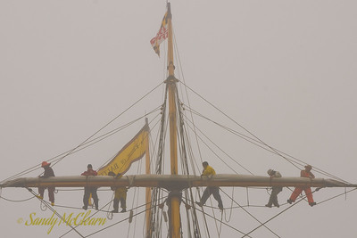 Crew aloft on the foremast of Pride of Baltimore II