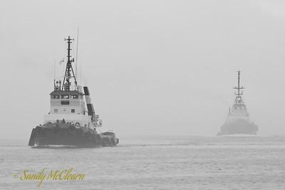 Two ECTUG tugs return to their wharf in the fog.