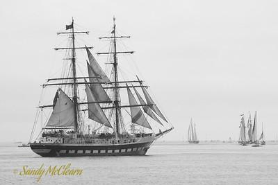 The brig Prince William.