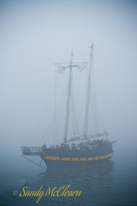 Shot from the ferry in the fog, this is the tour boat Liana's Ransom.