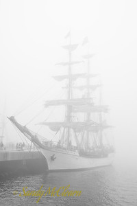Europa in the fog at Purdy's Wharf.