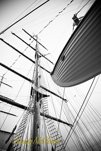 Looking up the main mast of Portugal's Sagres II.