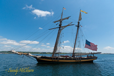 Pride of Baltimore II with sails down approaches her berth.