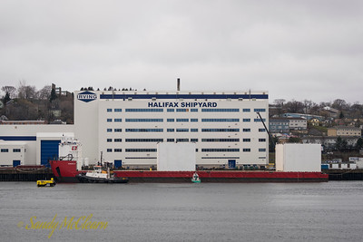 Boa Barge 37 at the Halifax Shipyard.