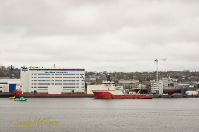 Boa Barge 37, Boa Bison, and the future HMCS HARRY DEWOLFE at the Halifax Shipyard.