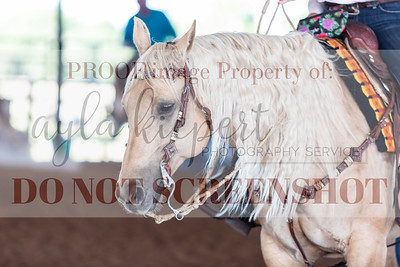 NavaRio5-23SnookTXRanchReining-4933