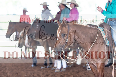NavaRio5-23SnookTXRanchReining-4703