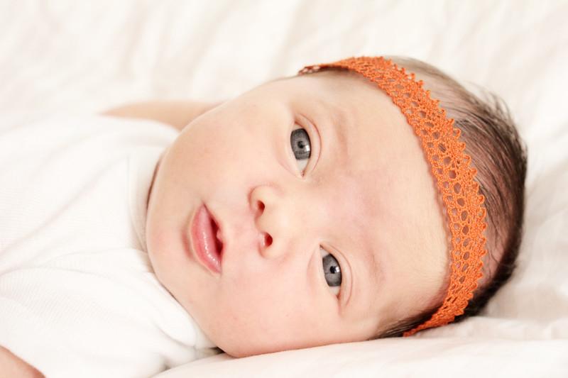 Kansas city newborn photographer, blue springs newborn photographer, newborn photographer