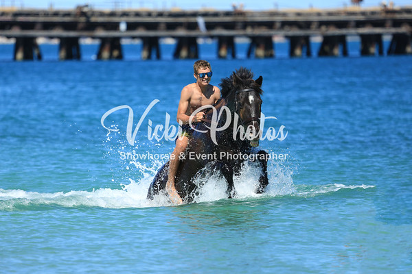 Naval Base Horse Beach  2017