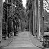 Nuuanu Avenue 1947