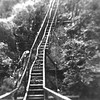 Wooden Haiku Ladder 1946