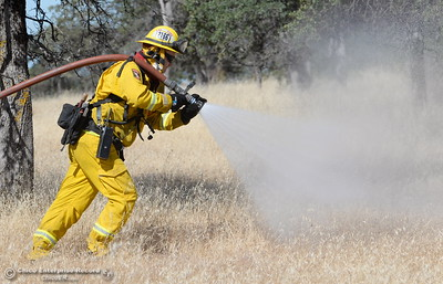 Firefighters walk in front of an engine with a hose during a fire training simulation at the Neal Indident drill in Paradise, Calif. Wed. June 22, 2016. (Bill Husa -- Enterprise-Record)