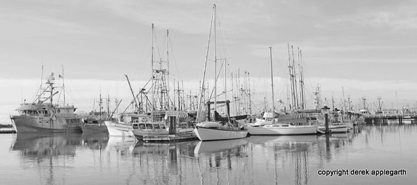 Fish boats Steveston, BC