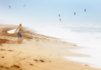 Kite Surfer's Paradise