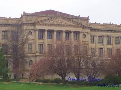 The capitol school