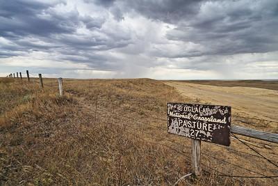 Pasture 27 in the Oglala National Grasslands