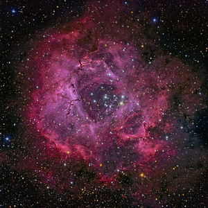 Rosette Nebula Version 2