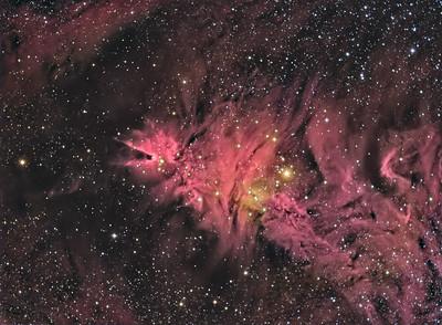 Cone and Fox Fur Nebula -- Monoceros Constellation
