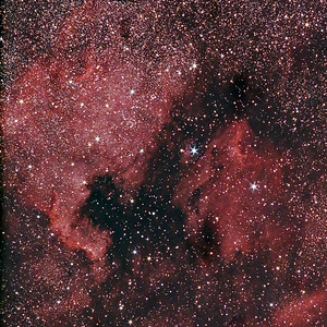 NorthAmerican and Pelican Nebula