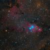 The Christmas Tree Cluster - NGC 2264