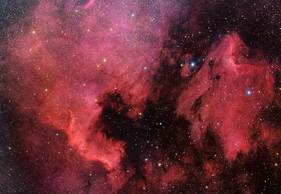 North America Nebula (NGC 7000) & Pelican Nebula (IC 5070)