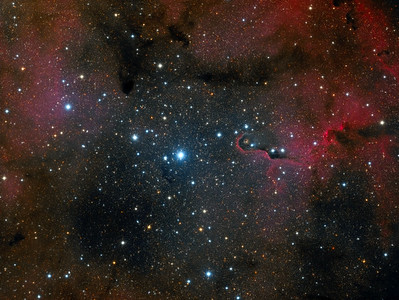 The Elephant's Trunk Nebula in Widefield - IC 1396