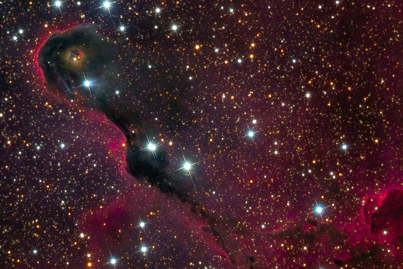 The Elephant's Trunk nebula - IC 1396