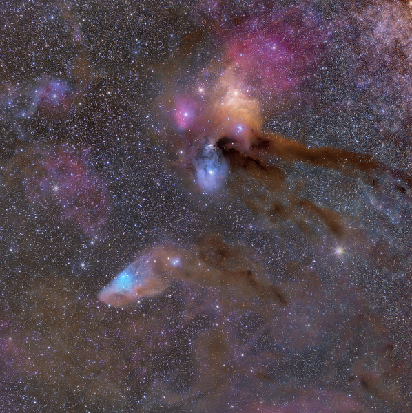 Rho Ophiuchi Complex