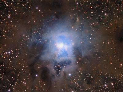 Iris Nebula - NGC7023