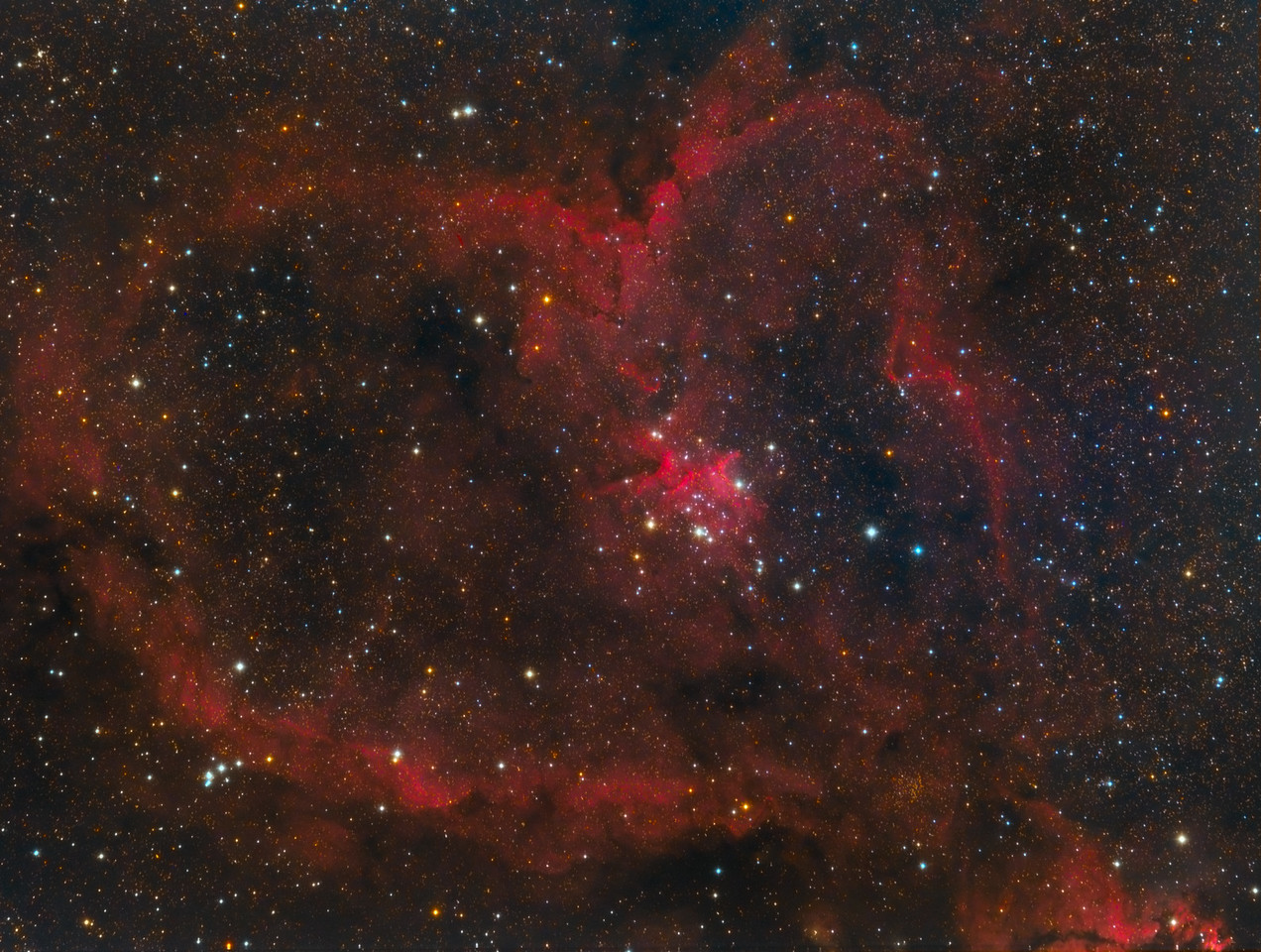 The Heart Nebula - IC 1805