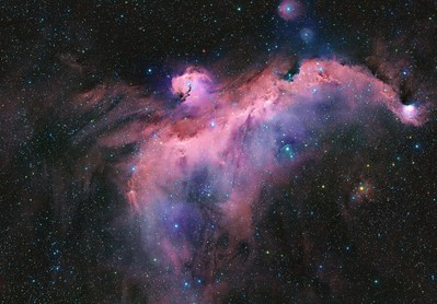 Sea Gull nebulae   IC2177
