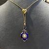Victorian Enamel Pendant, Slider Chain 5