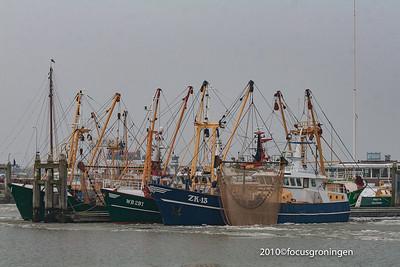 nederland 2010, lauwersoog, kustweg