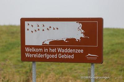 nederland 2020, zoutkamp, strandweg
