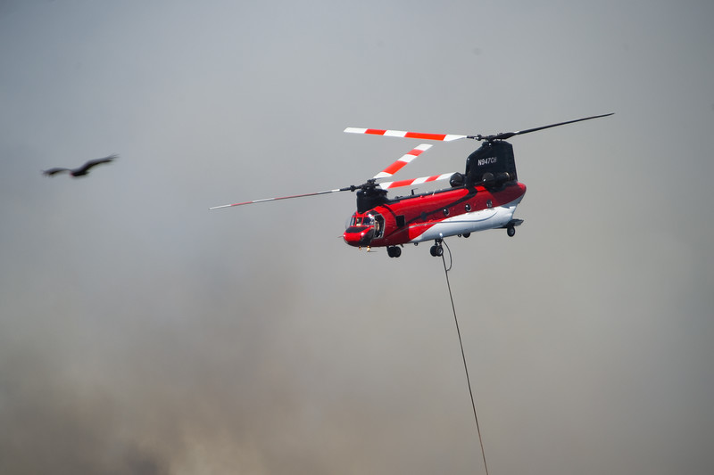 "A helicopter prepares for a water drop as they battle the Cold Springs Fire on Sunday.<br /> More photos:  <a href=""http://www.dailycamera.com"">http://www.dailycamera.com</a><br /> (Autumn Parry/Staff Photographer)<br /> July 10, 2016"