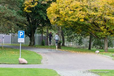 nederland 2013, groningen, iepenlaan, selwerderhof
