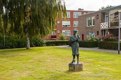 nederland 2014, olga met kat, paterswoldseweg
