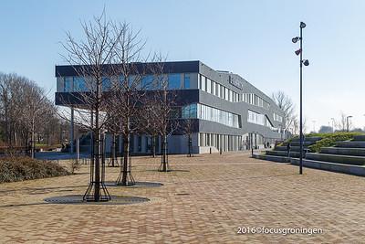 nederland 2016, groningen, kluiverboom