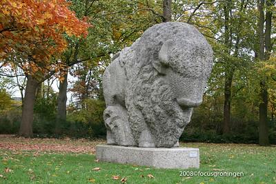 nederland 2008, groningen, de wisent, wladimir de vries, boteringesingel