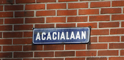 nederland 2014, groningen, acacialaan