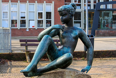 nederland 2009, groningen, denkstertje, wladimir de vries, paterswoldseweg