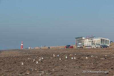nederland 2012, westkapelle, zeedijk