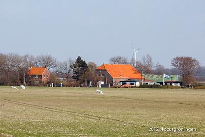 nederland 2012, wissenkerke, wantesweg