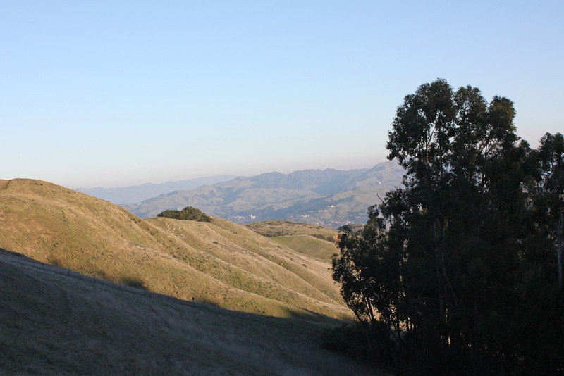 View from back of loop trail