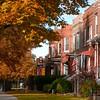 Fall Neighborhood in Chicago